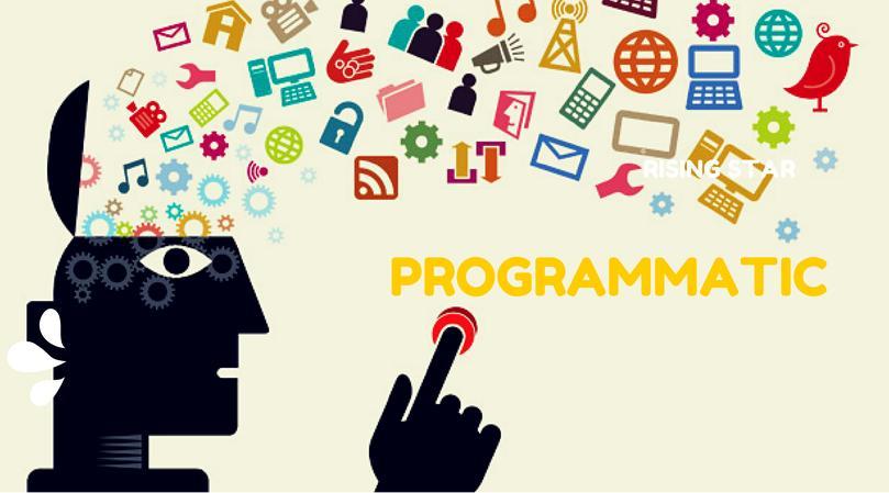 ppc programmatic